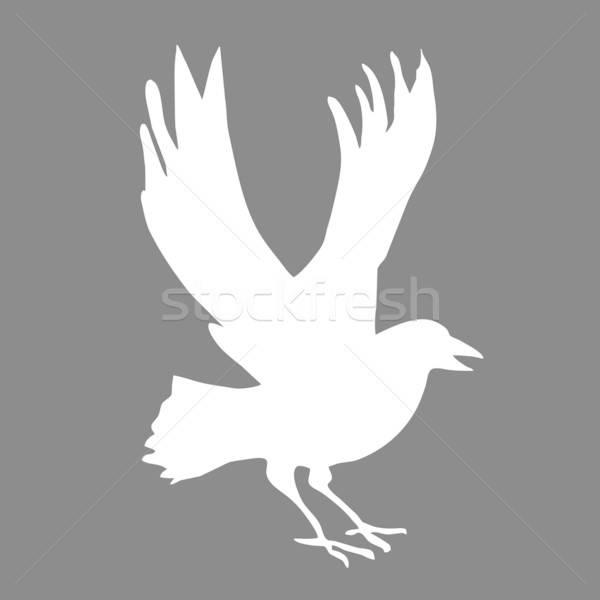 Vektör çizim siluet doğa imzalamak kuş Stok fotoğraf © basel101658