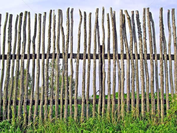 old fence  Stock photo © basel101658