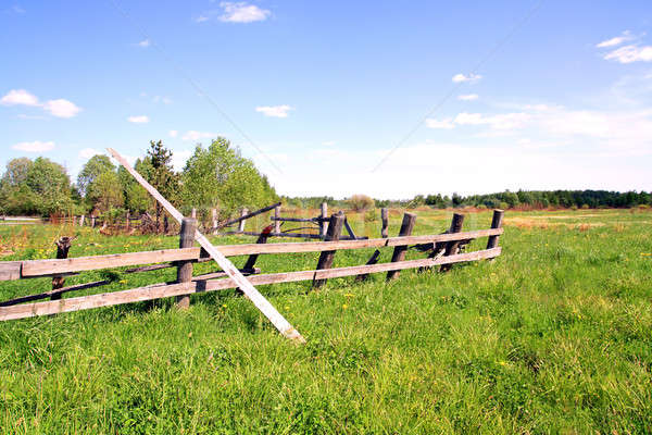Velho cerca campo parede jardim verão Foto stock © basel101658