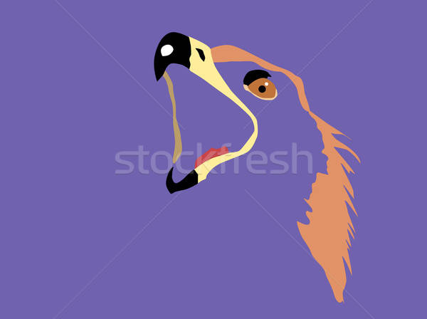 вектора рисунок силуэта голову орел Сток-фото © basel101658