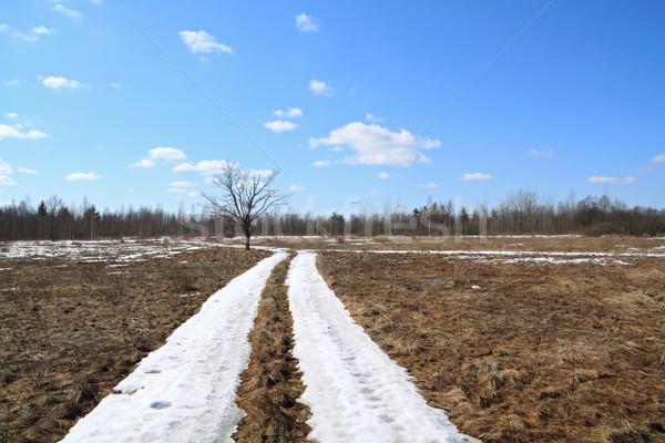 Hó út égbolt fa fa erdő Stock fotó © basel101658