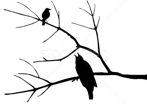 ベクトル 図面 シルエット 鳥 ツリー 背景 ストックフォト © basel101658