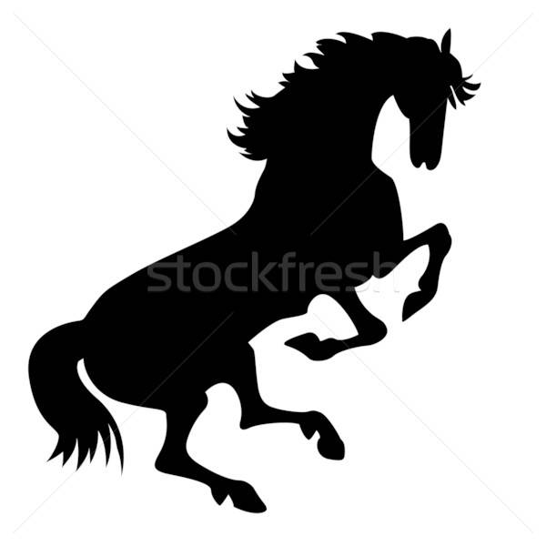 vector silhouette horse on white background  Stock photo © basel101658