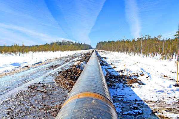 pipeline Stock photo © basel101658
