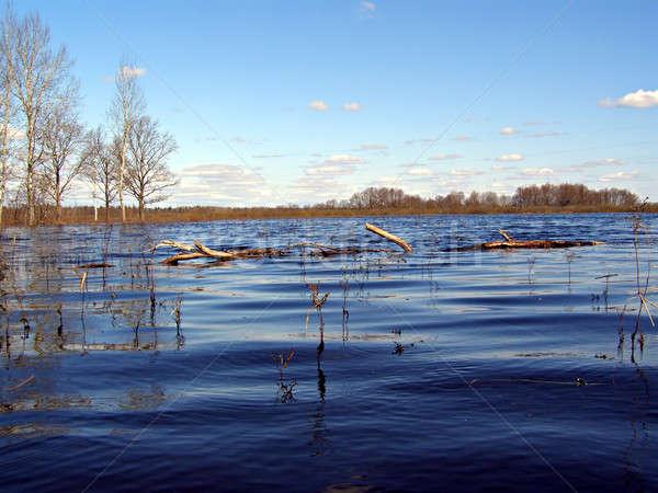 flood on river     Stock photo © basel101658