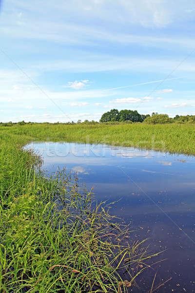 small lake on field Stock photo © basel101658