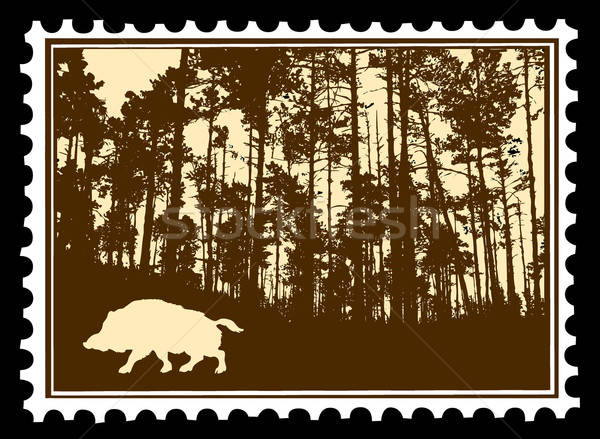 vector silhouette of the wild boar in wood on postage stamps Stock photo © basel101658