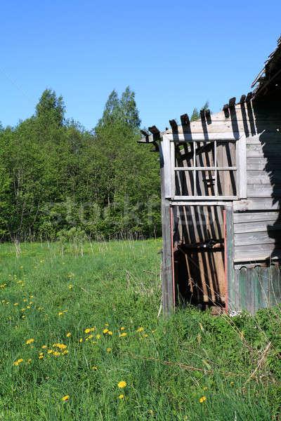Vidéki ház textúra fal festék keret Stock fotó © basel101658