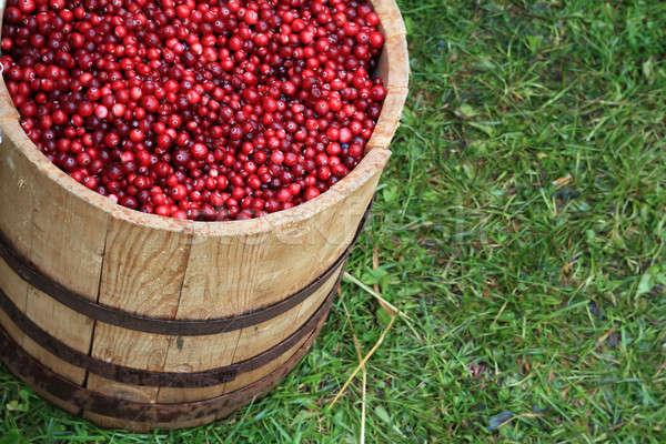 Barile alimentare legno sfondo gruppo Foto d'archivio © basel101658