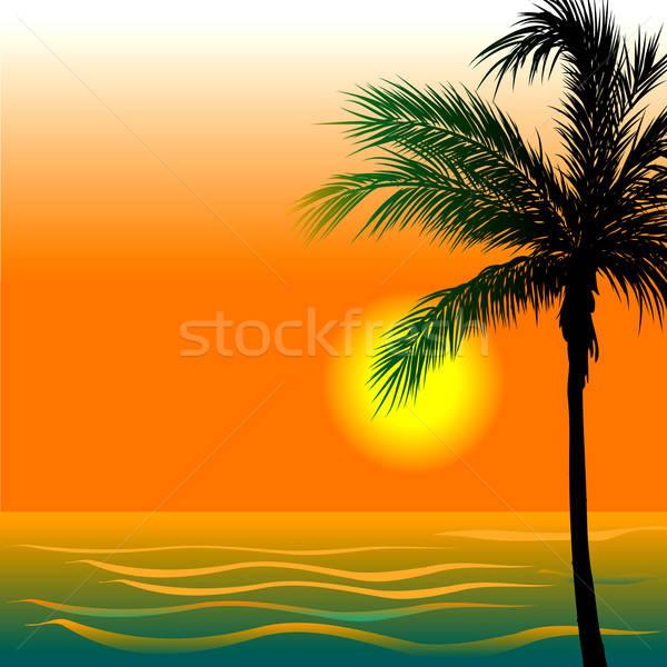 Stockfoto: Strand · zonsondergang · zonsopgang · zee · goud · silhouet