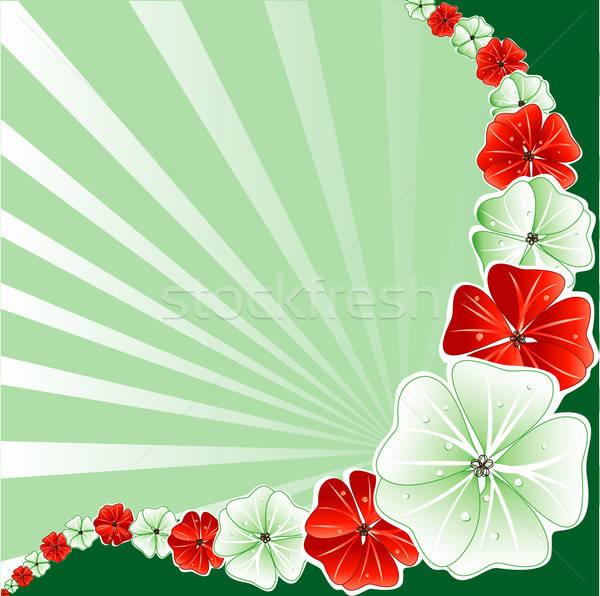 Christmas groene Rood bloemen vakantie Stockfoto © BasheeraDesigns