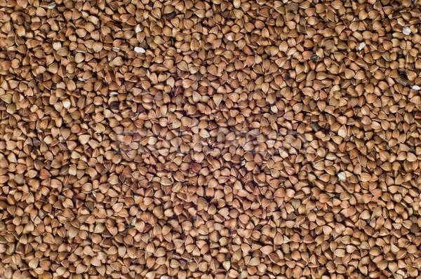 Buckwheat background  Stock photo © bayberry