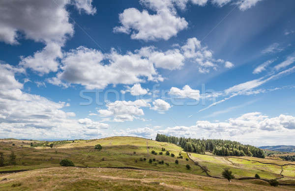 Landscape in Cumbria, UK  Stock photo © bayberry