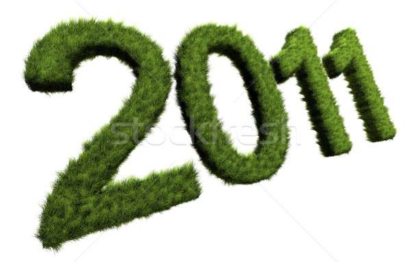 New Year concept  Stock photo © bayberry