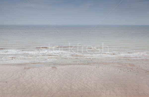 Nord mer plage vague vagues modèle Photo stock © bayberry