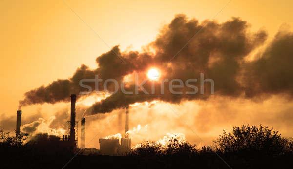 sun Stock photo © bazilfoto