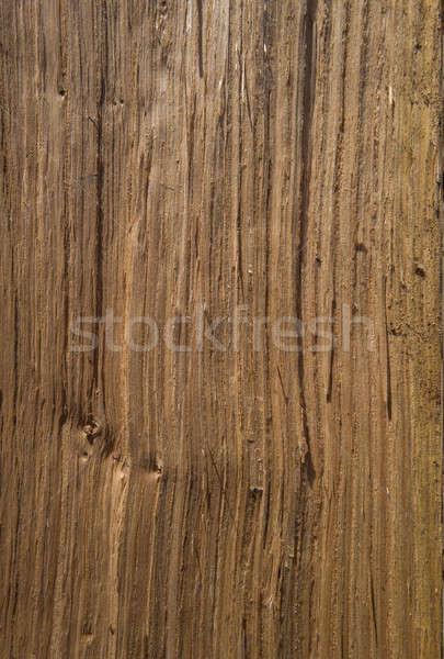 Tölgy fény textúra háttér padló szín Stock fotó © bazilfoto