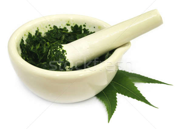 Mortar and pestle with medicinal neem leaves Stock photo © bdspn