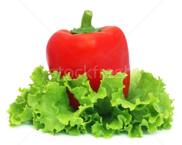 Capsicum with fresh lettuce Stock photo © bdspn