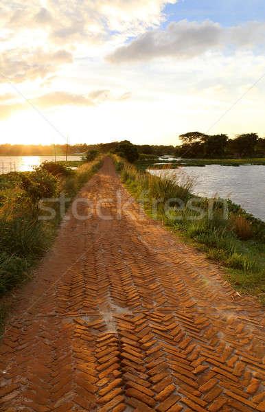 Brick road in rural area Stock photo © bdspn