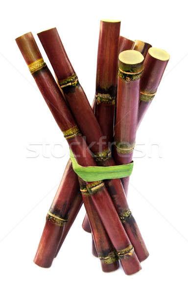 Fresh red sugarcane Stock photo © bdspn