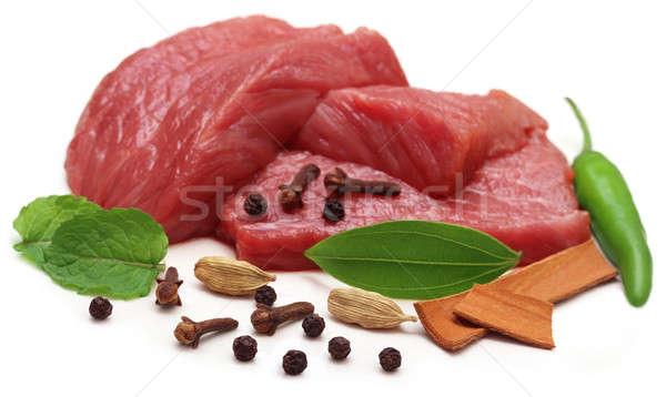 Carne temperos branco comida fundo Foto stock © bdspn