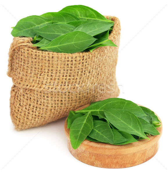 Henna leaves in sack and a wooden bowl Stock photo © bdspn