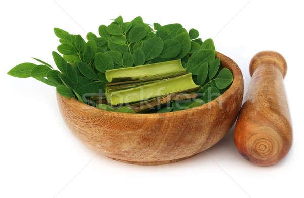 Moringa leaves and bark and mortar pestle Stock photo © bdspn