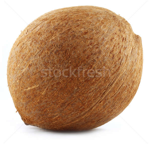 Coconut over white background Stock photo © bdspn