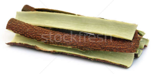 Tree bark of Medicinal Neem Stock photo © bdspn