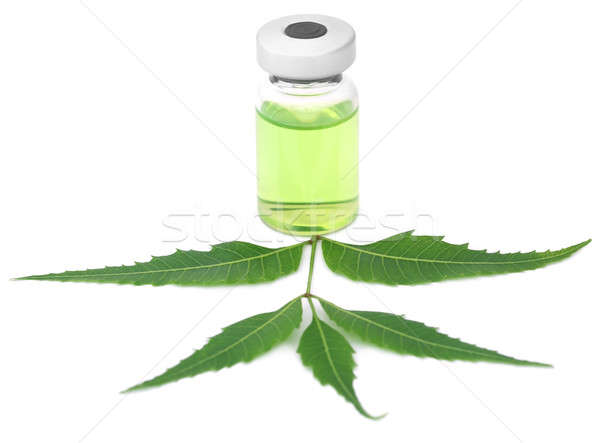 Medicinal neem leaves with a vial Stock photo © bdspn