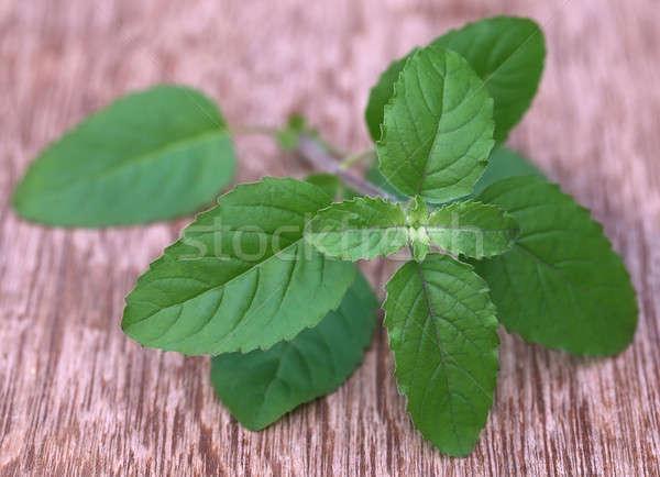 Gyógyászati piros levelek fából készült felület orvosi Stock fotó © bdspn