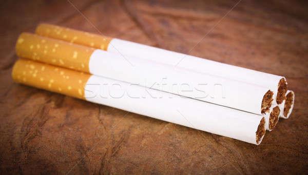 Photo stock: Filtrer · cigarette · sécher · tabac · laisse · ferme
