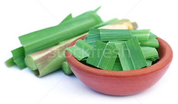 Poterie blanche herbe citron usine tropicales Photo stock © bdspn