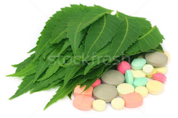 Stock photo: Pills made from medicinal neem leaves