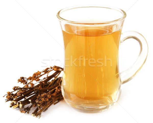 Ayurvedic medicinal Chirata with herbal juice Stock photo © bdspn