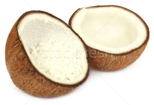 свежие кокосового белый продовольствие фрукты оболочки Сток-фото © bdspn