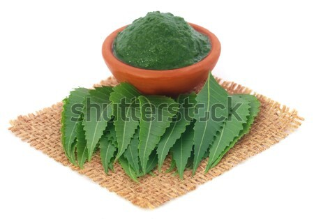 Medicinal neem leaves on a sack Stock photo © bdspn