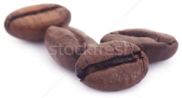 Pörkölt kávébab fehér kávézó fekete mezőgazdaság Stock fotó © bdspn