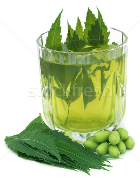 Medicinal neem extract with fruits and leaves Stock photo © bdspn
