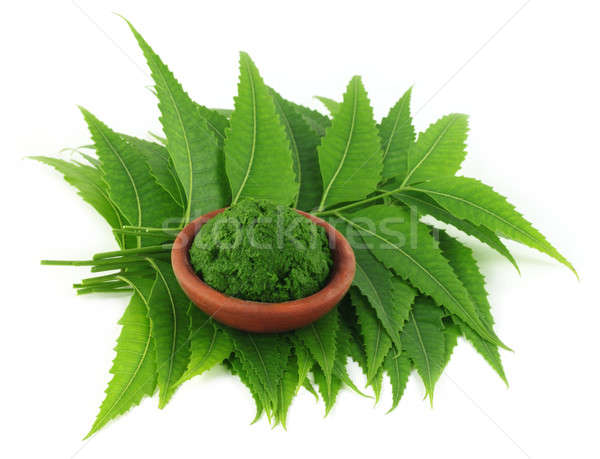 Medicinal neem leaves with paste on a brown bowl Stock photo © bdspn