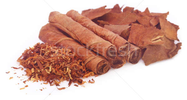 Dry tobacco leaves with hand made cigarette  Stock photo © bdspn