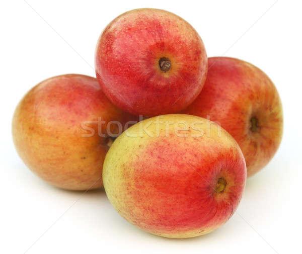 Ripe juicy jujube fruits Stock photo © bdspn
