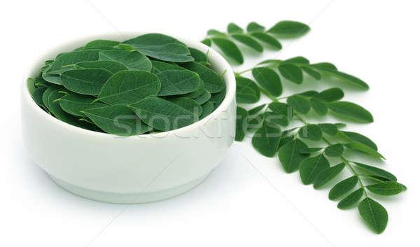 Comestible hojas blanco naturaleza verde vegetales Foto stock © bdspn