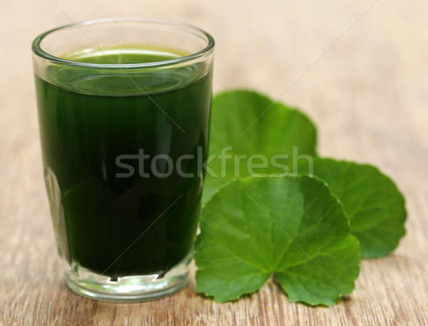 Thankuni leaves with extract Stock photo © bdspn