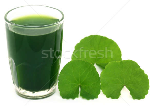 Medicinal thankuni leaves with extract Stock photo © bdspn