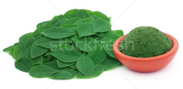Edible moringa leaves with ground paste Stock photo © bdspn
