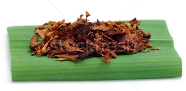 Tabac cigarette feuille verte médecin médicaux Photo stock © bdspn