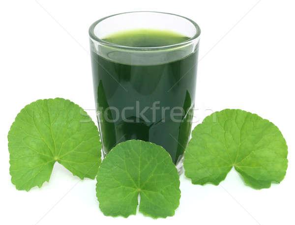Laisse sous-continent indien alimentaire feuille verre Photo stock © bdspn