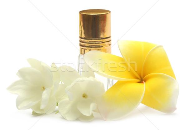 Jasmine flower and frangipani with perfume bottle Stock photo © bdspn